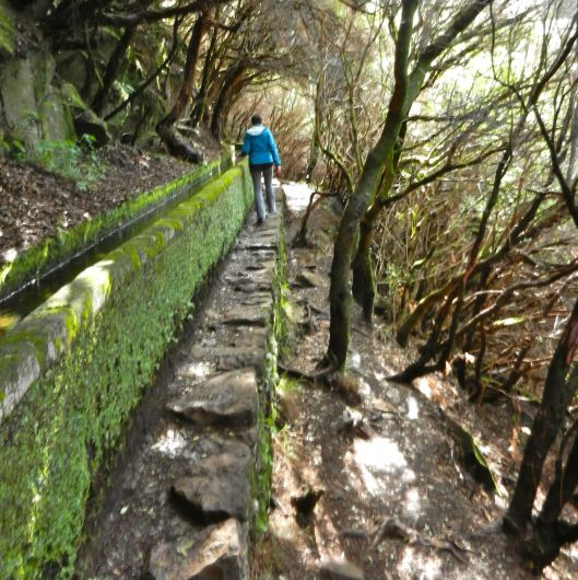"A ""levada"" walk on the hilly island of Madeira where we escaped French winter. These canals carry water from the mountains to farms and gardens and provide hiking trails throughout the island."