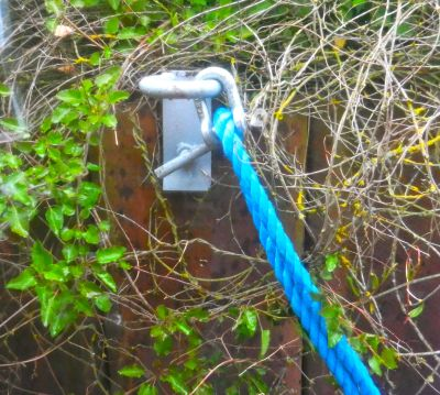 Our mooring clamps attached us to the overgrown steel walls of the canal.