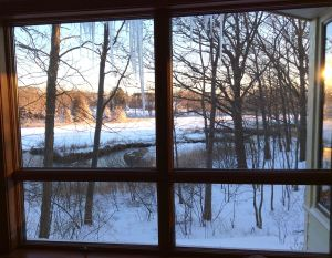 The view from our kitchen window onto the wintry salt marsh. Harvey plowed the driveway. Sandra shoveled off the roof.
