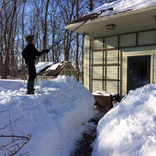 Harvey plowed the driveway every week and Sandra raked the roof.